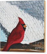 Cardinal In The Dogpound Wood Print