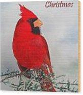 Cardinal Merry Christmas Wood Print