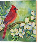 Cardinal On Dogwood Wood Print