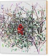 Cardinal Stare Wood Print