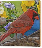Cardinal With Pansies And Decorations Photoart Wood Print