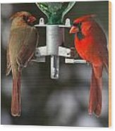 Cardinals Wood Print by John Kunze