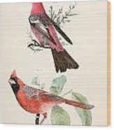 Cardinals Wood Print by Philip Ralley