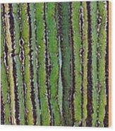 Cardon Cactus Texture. Wood Print
