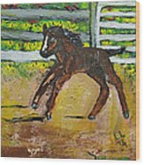 Carefree Pony Wood Print