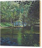 Carey's Pond Wood Print
