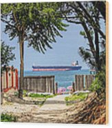 Cargo Ship On Chesapeake Bay Wood Print