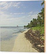Caribbean Beach In Ambergris Caye Belize Wood Print