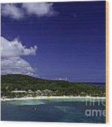 Caribbean Breeze Nine Wood Print