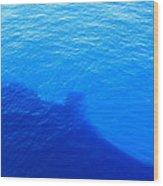 Caribbean Cruise - On Board Ship - 121289 Wood Print