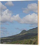 Caribbean Cruise - St Kitts - 1212157 Wood Print by DC Photographer