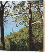 Caribbean Cruise - St Thomas - 1212107 Wood Print by DC Photographer