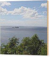 Caribbean Cruise - St Thomas - 1212135 Wood Print