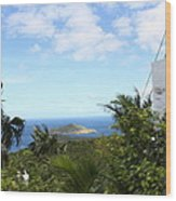Caribbean Cruise - St Thomas - 1212181 Wood Print by DC Photographer