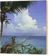 Caribbean Day Wood Print