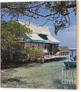 Caribbean House And Boat Wood Print