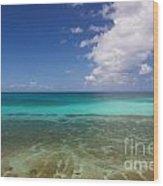 Caribbean Ocean Panorama Wood Print