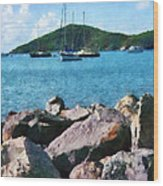 Caribbean - Rocky Shore St. Thomas Wood Print