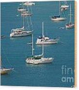 Caribbean Sailboats Wood Print