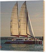 Caribbean Spirit Sails Miami Wood Print