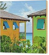 Caribbean Village Wood Print by Randall Weidner