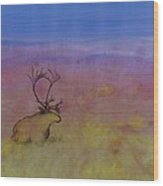 Caribou On The Tundra Wood Print by Carolyn Doe