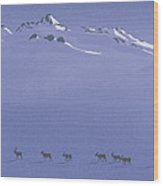 Caribou Trail Wood Print
