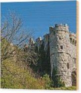 Carisbrooke Castle Wood Print