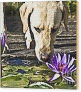 Carla's Dog Wood Print