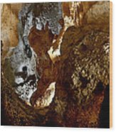 Carlsbad Caverns #1 Wood Print