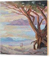 Carmel Beach Winter Sunset Wood Print