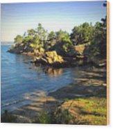 Carmel Meadows Beach At Point Lobos Wood Print