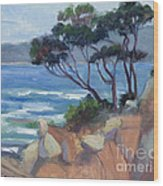 Carmel View From Point Lobos Wood Print