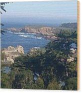 Carmel's Coastline Wood Print