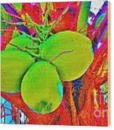 Carmen's Coconuts Wood Print