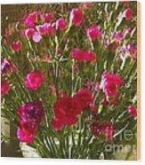 Carnations Wood Print