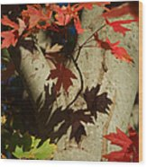 Carolina Autumn Wood Print