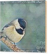 Carolina Chickadee With Decorative Frame I Wood Print