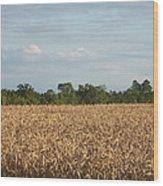 Carolina Field Wood Print