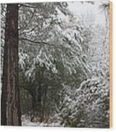 Carolina Snowfall Wood Print