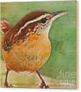 Carolina Wren Greeting Card Size Wood Print