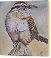 Carolina Wren Wood Print