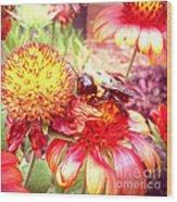 Carpenter Bee No. 4 Wood Print
