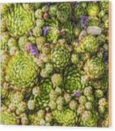 Carpet Wood Print