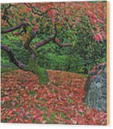Carpet Of Fall Colors In Portland Japanese Garden Wood Print