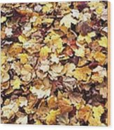 Carpet Of Leafs Wood Print