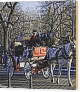 Carriage Driver - Central Park - Nyc Wood Print