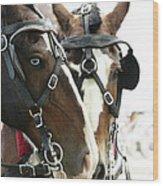 Carriage Horse - 4 Wood Print