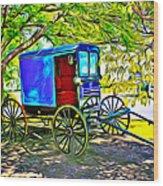 Amish Carriage Wood Print