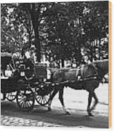 Carriage Ride Nyc Wood Print